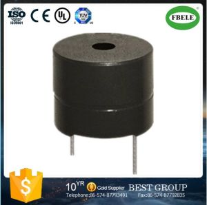 Piezo Transducer and Piezo Buzzer for Security Product (FBELE) pictures & photos