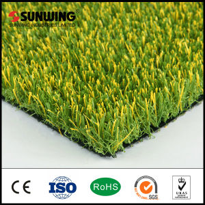 Wholesale Plastic Artificial Lawn Turf Grass for Roofing pictures & photos
