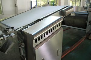 Oven Feeding Conveyor for Biscuit Production Line pictures & photos