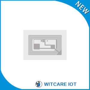 ISO/IEC15693 Passive Flexible RFID Hf Inlay