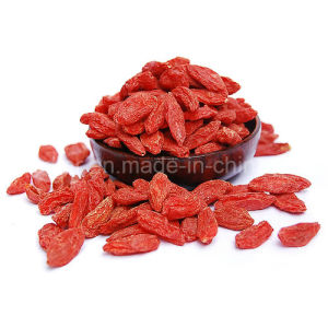 Medlar Certified Gojivberry Organic Goji pictures & photos