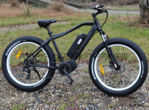 250W Mountain Electric Bike Bicycle with Ce pictures & photos
