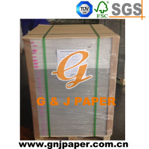 Coated White Duplex Board with Gray Back for Wholesale pictures & photos