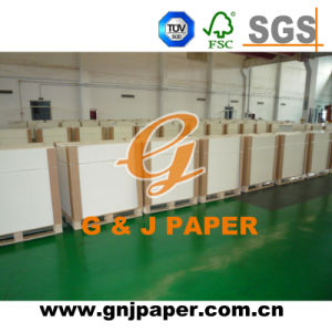 300GSM 520*750mm 700*1000mm Coated Board for Business Cards Production pictures & photos