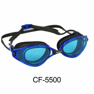 Board Goggles (CF-5500) pictures & photos