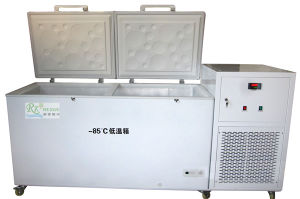 Low Temperature Freezer for Drug and Vaccine Storage (RXDW150L)