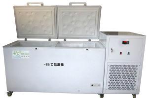 Low Temperature Freezer for Drug and Vaccine Storage (RXDW150L)