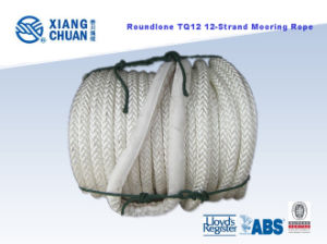 Roundline Tq12 12-Strand Polypropylene Mooring Rope pictures & photos