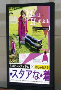 "19"" LCD Advertising Display (SY-019)"
