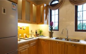 Solid Wood Kitchen Cabinet and Kitchen Furniture #281 pictures & photos