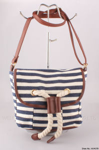 2016 New Canvas Bag for Lady (H14179) pictures & photos