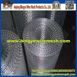 Anping Galvanized Crimped Wire Mesh pictures & photos