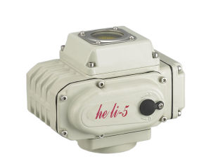 Electric Rotary Fine Actuator (HL-05) pictures & photos