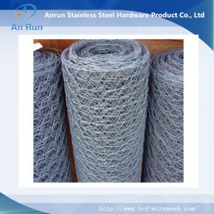 Hexagonal Wire Mesh of Exporing Standard pictures & photos