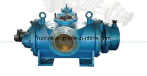Screw Pump 2lb/2gc/80 pictures & photos