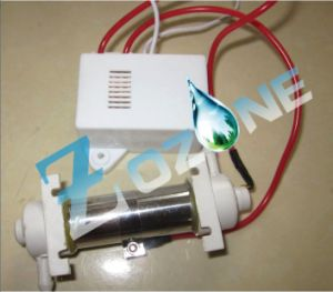 200mg Ozonator Used for Fruit and Vegetable Machine