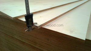 A Grade White Poplar Plywood for Furniture pictures & photos