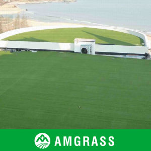Natural Looking Artificial Grass for Landscaping pictures & photos