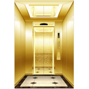 Professional Manufacture of Passenger Elevator pictures & photos