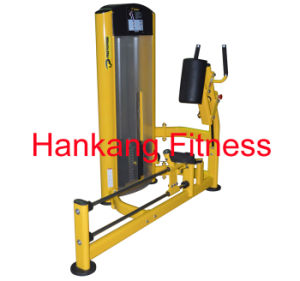 Home Gym, body-building machine, Fitness-Glute (PT-912) pictures & photos