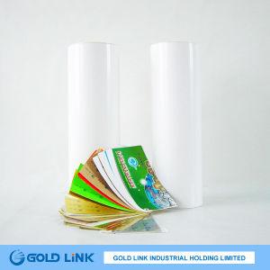 Self Adhesive PVC Transparent Vinyl Film (P6408-T) pictures & photos