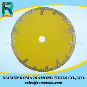 Romatools Diamond a Type Blades - Protective Segments pictures & photos