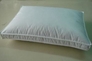 Gusset Feather and Microfiber Pillow pictures & photos