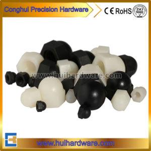 Black/White Domed Nylon Cap Nut Acorn Nut pictures & photos