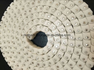 Plastic Transmission Roller Chain with Back Bending pictures & photos