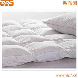 High Quality Anti-Microbial Waterproof Mattress Cover / Protector pictures & photos