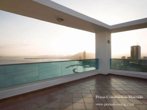 External Frameless Glass Balustrade (PR-08) pictures & photos