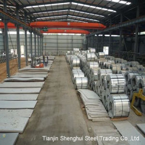 Prepainted Galvanized Coil (Tdx51d, Tsgcc) pictures & photos
