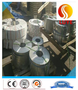 Stainless Steel Hot Rolled Strip/Coil pictures & photos