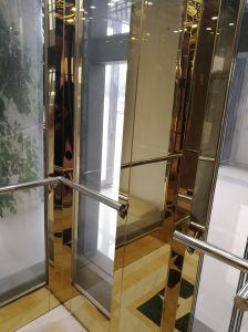 Vvvf Drive Gearless Traction Home Villa Elevator with German Technology pictures & photos