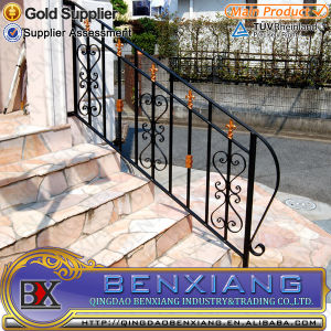 Wrought Iron Handrails Outdoor Stairs pictures & photos