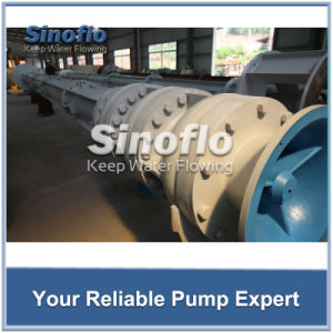 Long shaft Overhung Vertical Turbine Sump Drainage/Dewatering Pump pictures & photos