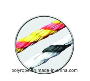 Solid Diamond Double Braided Polyester Rope pictures & photos