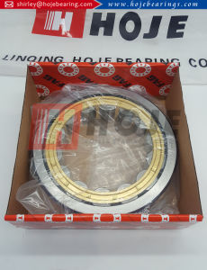 Full Complement Cylindrical Roller Bearing Nup207 Nup2207 Nup307 Nup2307