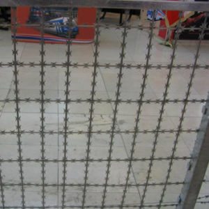 Galvanized Concertina Razor Barbed Wire /Razor Wire Price /High Quality Razor Manufacturer /Concertina Razor Wire/Single Loop Razor Wir pictures & photos