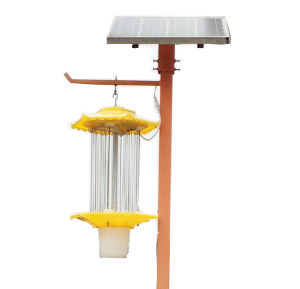 Pollution-Free Pesticides Electric Shock Type Solar Pest Control Lamp pictures & photos