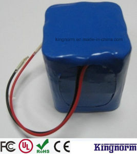 24V10ah LFP LiFePO4 Battery Pack with BMS Charger pictures & photos