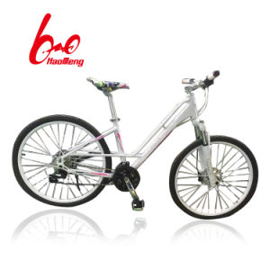 24# Aluminium Alloy City Public Bicycle pictures & photos