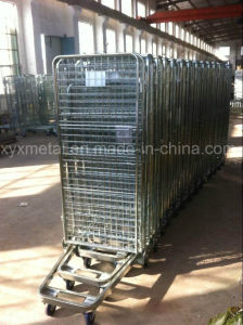 Four Sided Security Roll Cage pictures & photos