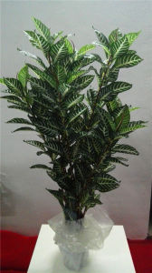 High Quality of Artificial Plants Croton with Height of 120cm Gu911093714 pictures & photos
