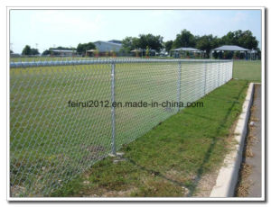 Galvanized Chain Link Mesh pictures & photos
