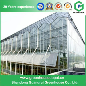 High Quality Glass Green Houses Agriculture on Sale pictures & photos
