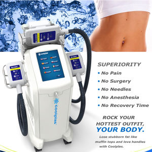 Korea Three Handles New Slimming Weight Loss Cellulite Removal Cryolipolysis Machine pictures & photos
