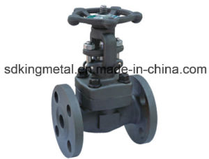 900lbs Forged Steel Flanged End Gate Valve pictures & photos