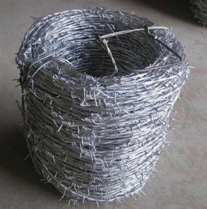 Electric/Hot Dipped Galvanized Barbed Wire pictures & photos