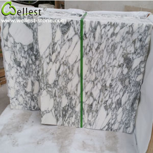 M814 Natural Arabescato Corchia White Marble for Floor and Wall Tile pictures & photos